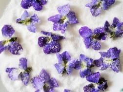 violete cu zahar
